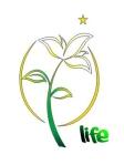Logo Life Genertaion (Bunga Edelweis)